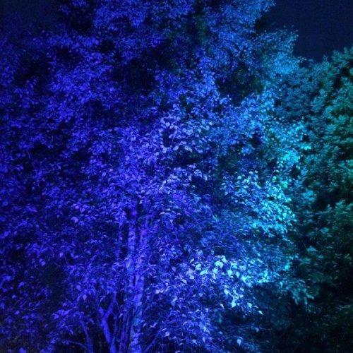 ландшафтный прожектор, DMX уличный прожектор, подсветка кустов, подсветка деревьев DMX RDM, RDM спот уличный, уличный RDM DMX SPOT, RDM светильник, RDM DMX ландшафтная подсветка, заливка кустов, DMX RDM IP65 прожектор,